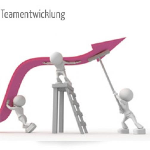 Teamentwicklung und Teamsupervision
